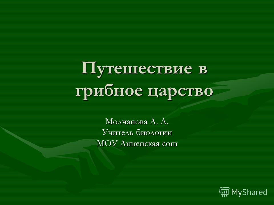 Путешествие в грибное царство Молчанова А. Л. Учитель биологии МОУ Анненская сош