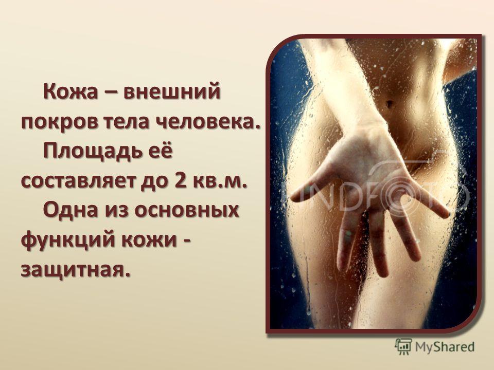 Кожа – внешний покров тела человека. Площадь её составляет до 2 кв.м. Одна из основных функций кожи - защитная. Кожа – внешний покров тела человека. Площадь её составляет до 2 кв.м. Одна из основных функций кожи - защитная.