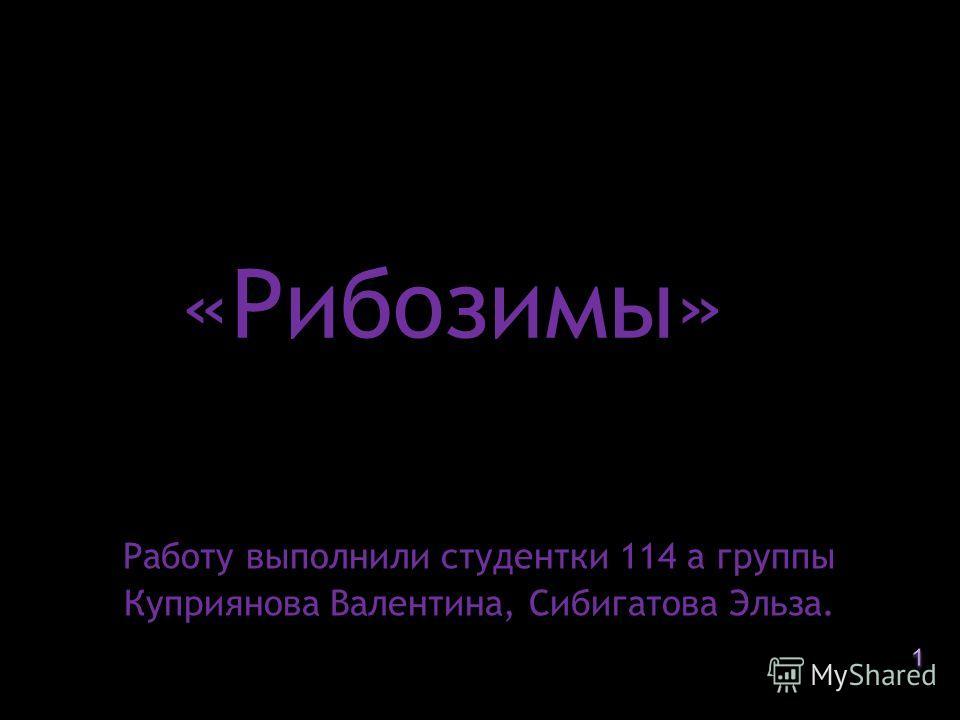 «Рибозимы» Работу выполнили студентки 114 а группы Куприянова Валентина, Сибигатова Эльза.