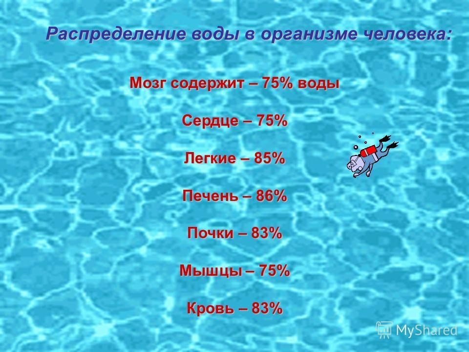 Распределение воды в организме человека: Мозг содержит – 75% воды Сердце – 75% Легкие – 85% Печень – 86% Почки – 83% Мышцы – 75% Кровь – 83%