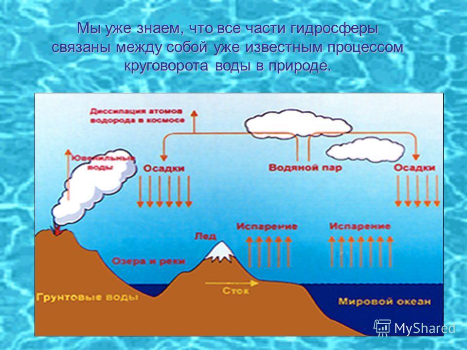 Мы уже знаем, что все части гидросферы связаны между собой уже известным процессом круговорота воды в природе.