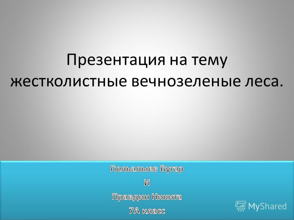 Презентация на тему жестколистные вечнозеленые леса.