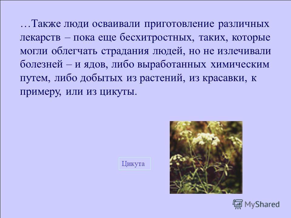 …Также люди осваивали приготовление различных лекарств – пока еще бесхитростных, таких, которые могли облегчать страдания людей, но не излечивали болезней – и ядов, либо выработанных химическим путем, либо добытых из растений, из красавки, к примеру,