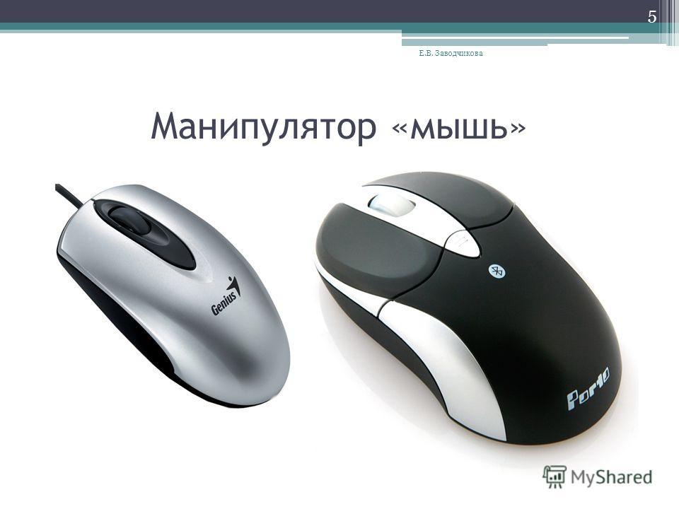 Манипулятор «мышь» Е.В. Заводчикова 5