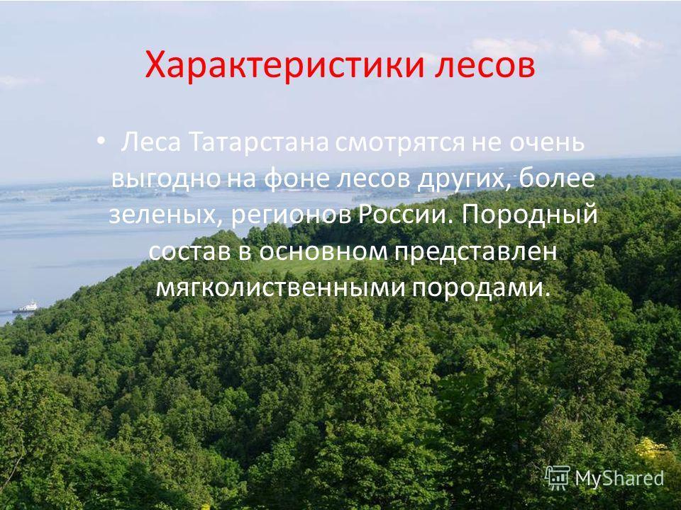 Характеристики лесов Леса Татарстана смотрятся не очень выгодно на фоне лесов других, более зеленых, регионов России. Породный состав в основном представлен мягколиственными породами.