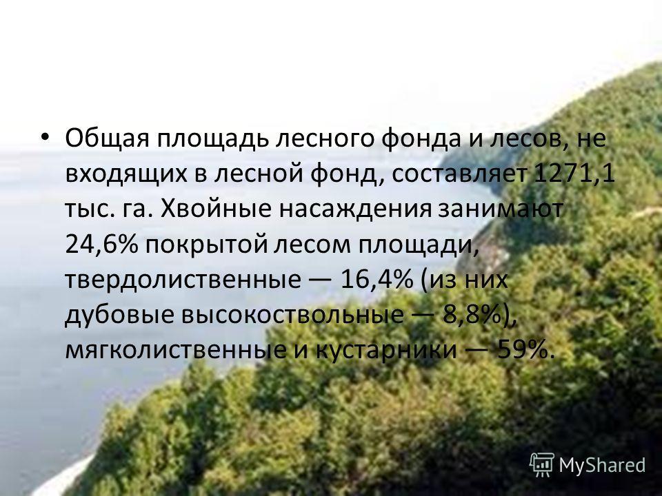 Общая площадь лесного фонда и лесов, не входящих в лесной фонд, составляет 1271,1 тыс. га. Хвойные насаждения занимают 24,6% покрытой лесом площади, твердолиственные 16,4% (из них дубовые высокоствольные 8,8%), мягколиственные и кустарники 59%.