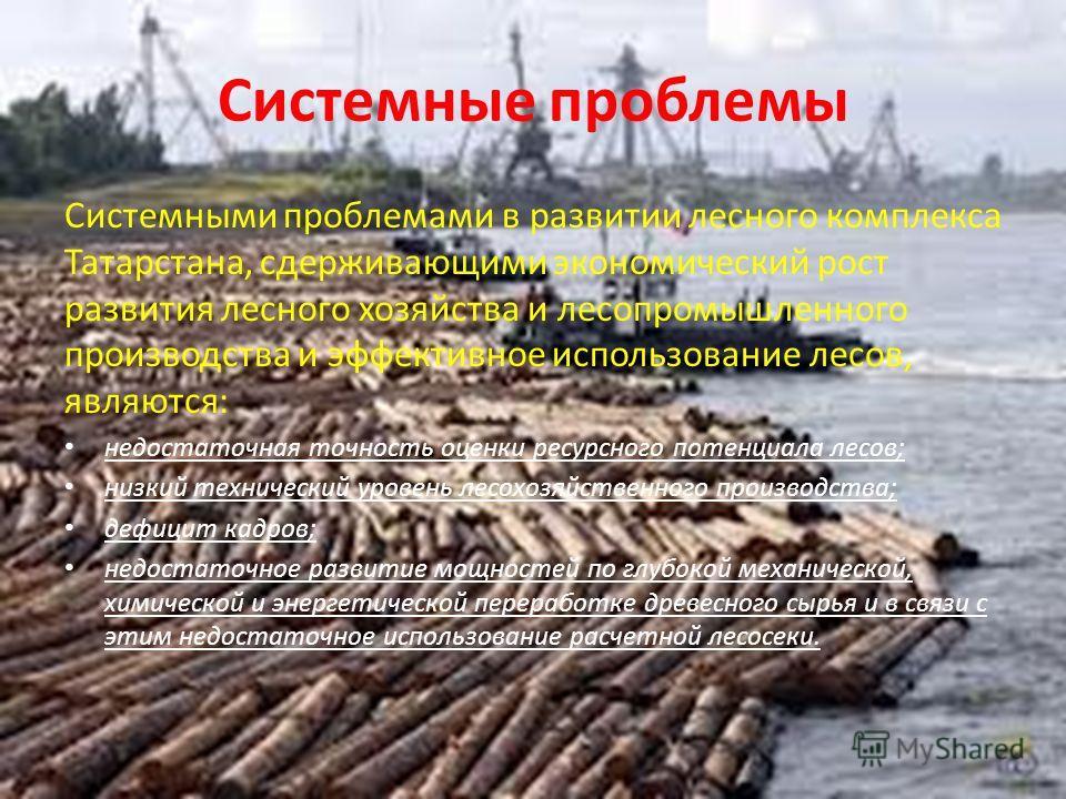 Системные проблемы Системными проблемами в развитии лесного комплекса Татарстана, сдерживающими экономический рост развития лесного хозяйства и лесопромышленного производства и эффективное использование лесов, являются: недостаточная точность оценки
