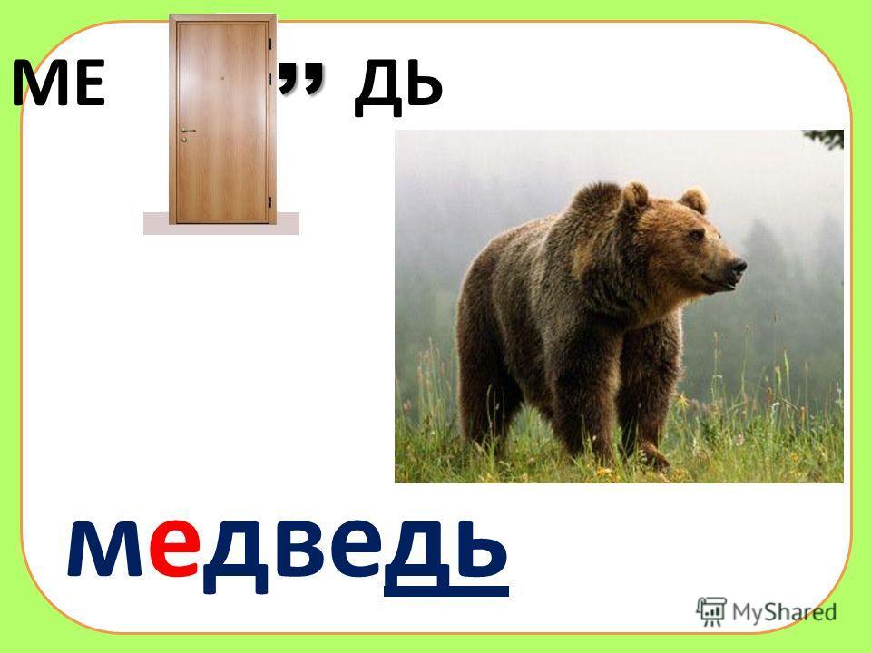 МЕ ДЬ,, медведь