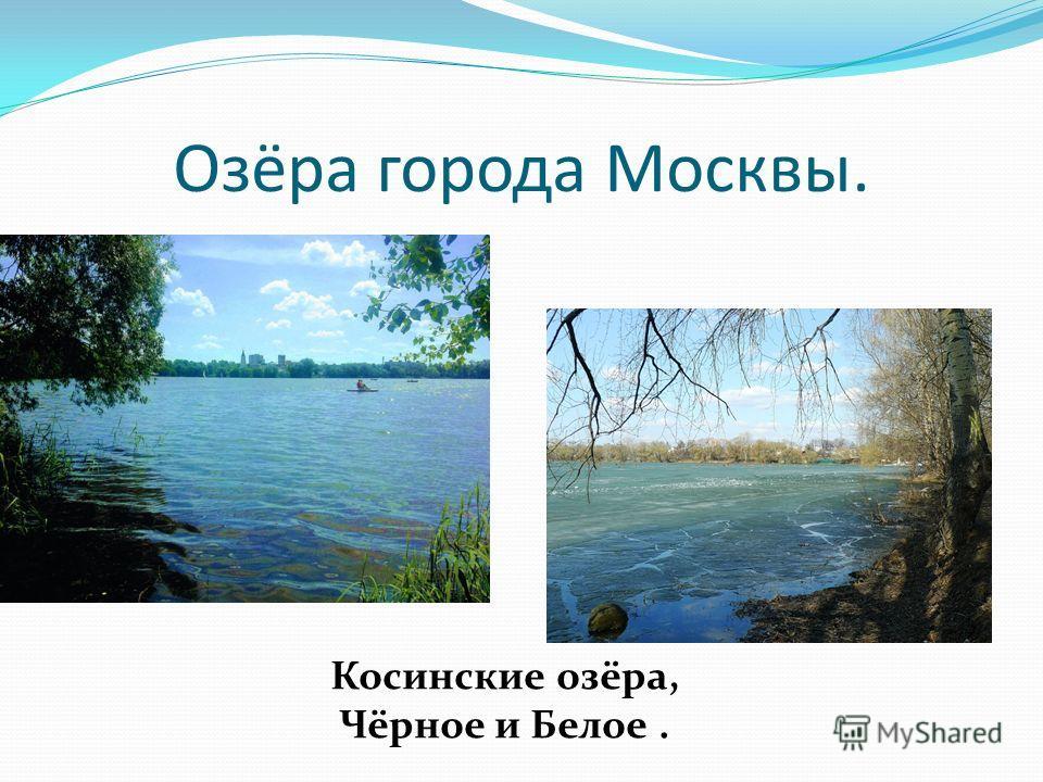 Озёра города Москвы. Косинские озёра, Чёрное и Белое.
