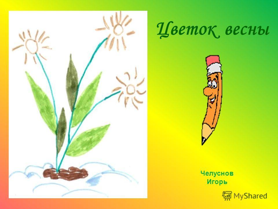 Цветок весны Челуснов Игорь