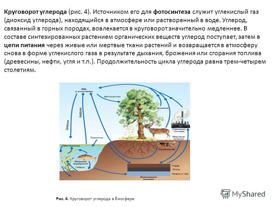Круговорот углерода (рис. 4). Источником его для фотосинтеза служит углекислый газ (диоксид углерода), находящийся в атмосфере или растворенный в воде. Углерод, связанный в горных породах, вовлекается в круговорот значительно медленнее. В составе син