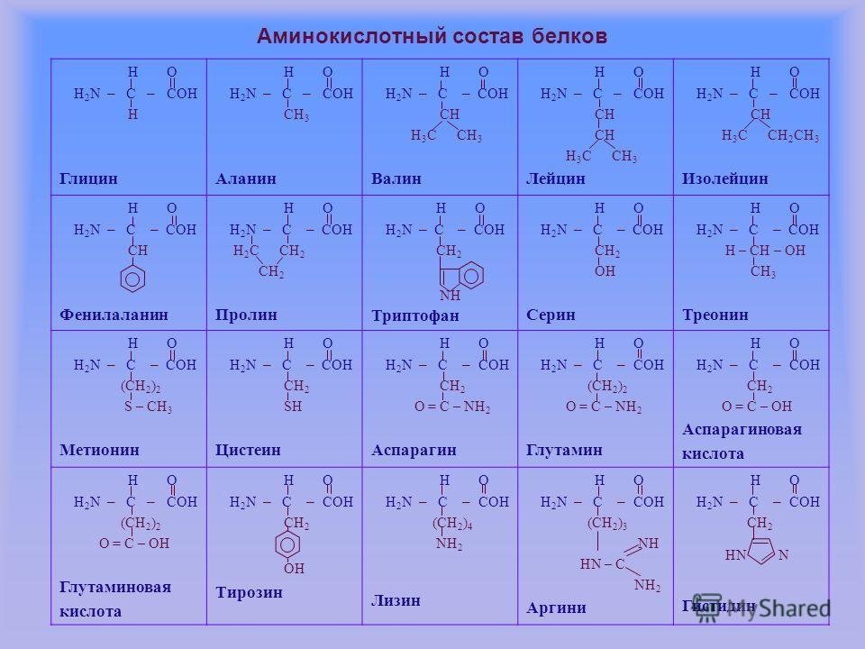 Аминокислотный состав белков Н O Н 2 N – C – COH H Глицин Н O Н 2 N – C – COH СH 3 Аланин Н O Н 2 N – C – COH СH Н 3 С СН 3 Валин Н O Н 2 N – C – COH СH Н 3 С СН 3 Лейцин Н O Н 2 N – C – COH СH Н 3 С СН 2 СН 3 Изолейцин Н O Н 2 N – C – COH СH Фенилал