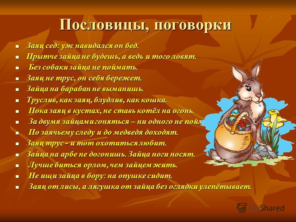 Пословицы, поговорки Заяц сед: уж навидался он бед. Заяц сед: уж навидался он бед. Прытче зайца не будешь, а ведь и того ловят. Прытче зайца не будешь, а ведь и того ловят. Без собаки зайца не поймать. Без собаки зайца не поймать. Заяц не трус, он се