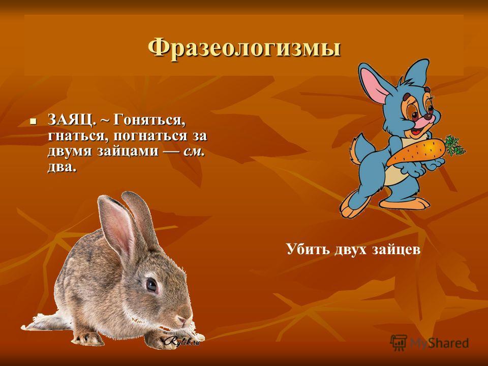 Фразеологизмы ЗАЯЦ. ~ Гоняться, гнаться, погнаться за двумя зайцами см. два. ЗАЯЦ. ~ Гоняться, гнаться, погнаться за двумя зайцами см. два. Убить двух зайцев