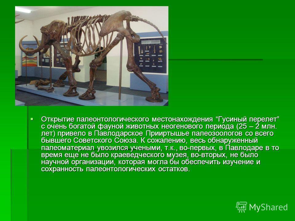 Открытие палеонтологического местонахождения Гусиный перелет с очень богатой фауной животных неогенового периода (25 – 2 млн. лет) привело в Павлодарское Прииртышье палеозоологов со всего бывшего Советского Союза. К сожалению, весь обнаруженный палео