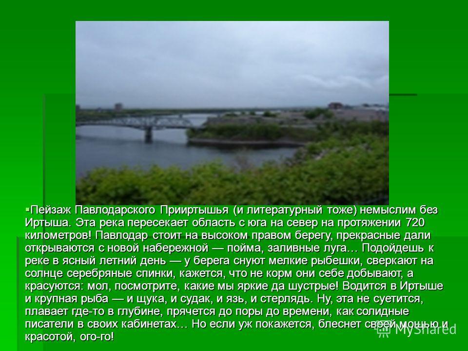 Пейзаж Павлодарского Прииртышья (и литературный тоже) немыслим без Иртыша. Эта река пересекает область с юга на север на протяжении 720 километров! Павлодар стоит на высоком правом берегу, прекрасные дали открываются с новой набережной пойма, заливны