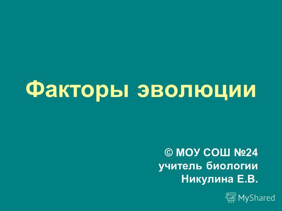 Факторы эволюции © МОУ СОШ 24 учитель биологии Никулина Е.В.