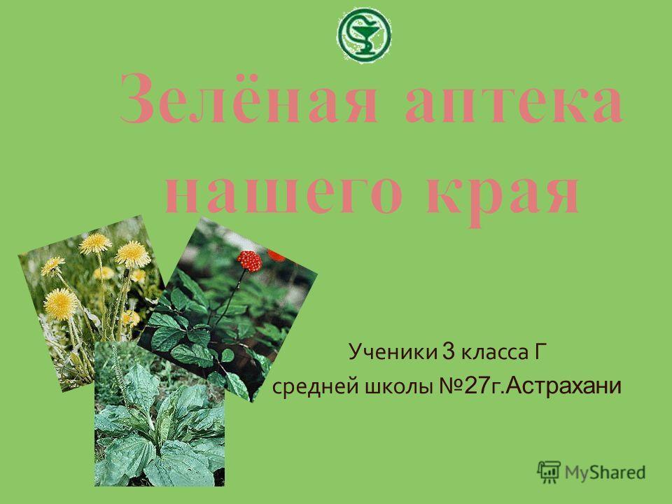 Ученики 3 класса Г средней школы 27 г. Астрахани