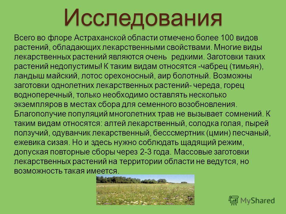 Исследования Всего во флоре Астраханской области отмечено более 100 видов растений, обладающих лекарственными свойствами. Многие виды лекарственных растений являются очень редкими. Заготовки таких растений недопустимы! К таким видам относятся -чабрец
