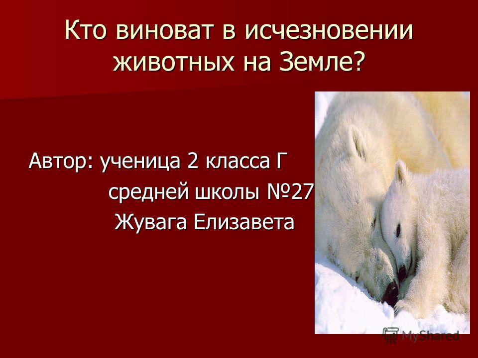 Кто виноват в исчезновении животных на Земле? Автор: ученица 2 класса Г средней школы 27 средней школы 27 Жувага Елизавета Жувага Елизавета