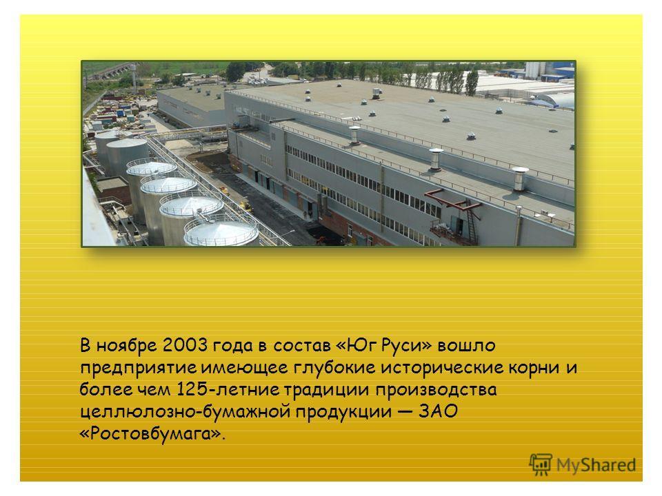 В ноябре 2003 года в состав «Юг Руси» вошло предприятие имеющее глубокие исторические корни и более чем 125-летние традиции производства целлюлозно-бумажной продукции ЗАО «Ростовбумага».