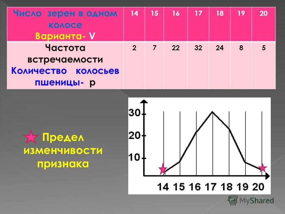 Число зерен в одном колосе Варианта- V 14151617181920 Частота встречаемости Количество колосьев пшеницы- p 2722322485 Предел изменчивости признака