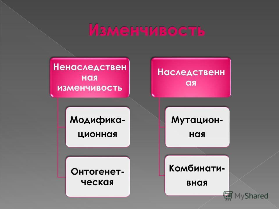 Ненаследствен ная изменчивость Модифика- ционная Онтогенет- ческая Наследственн ая Мутацион- ная Комбинати- вная