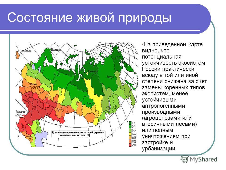 Состояние живой природы На приведенной карте видно, что потенциальная устойчивость экосистем России практически всюду в той или иной степени снижена за счет замены коренных типов экосистем, менее устойчивыми антропогенными производными (агроценозами
