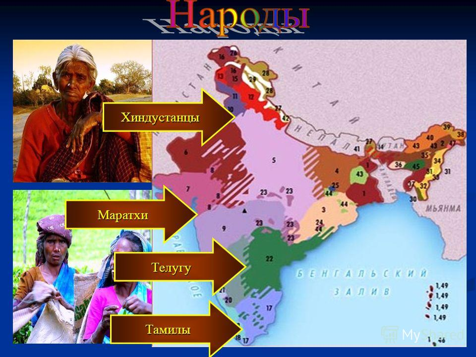 Хиндустанцы Тамилы Маратхи Телугу