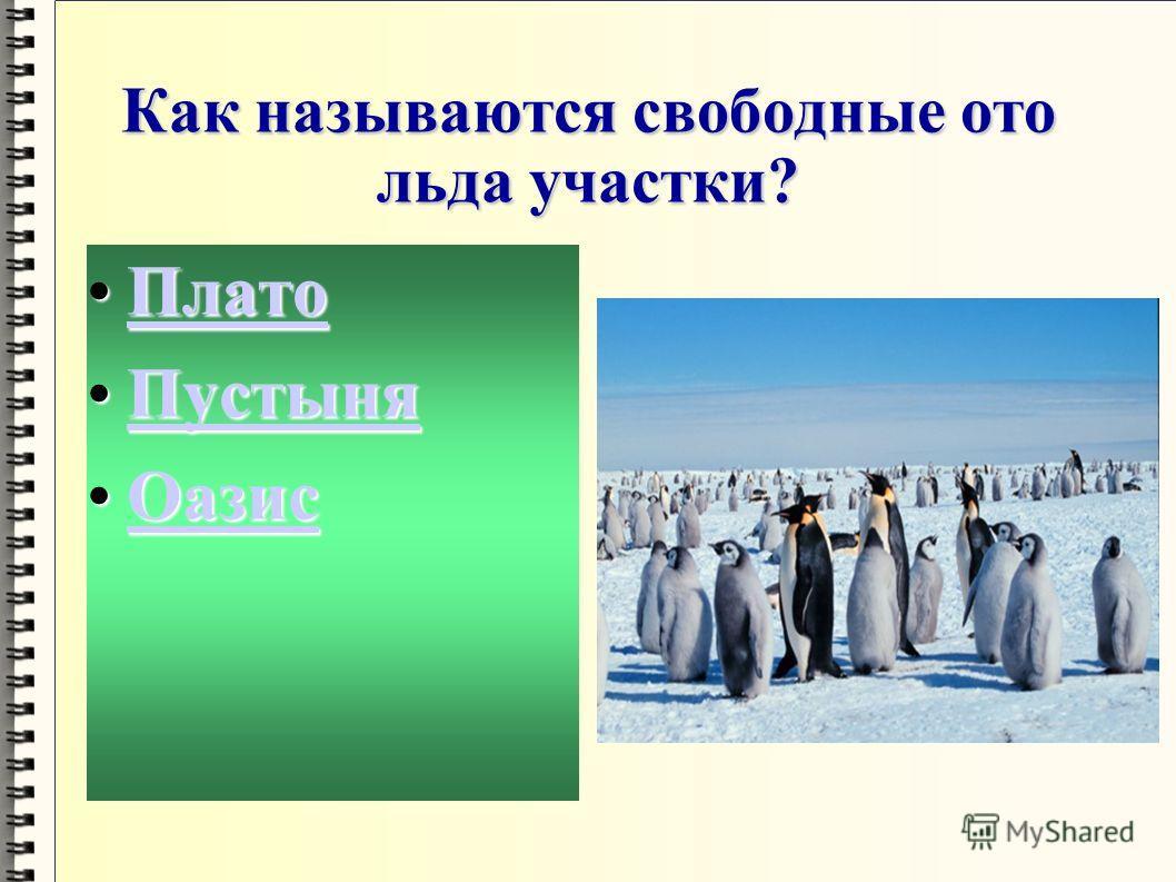 Какой вид пингвинов имеет массу до 50 кг и высоту более 1 м? АделиАделиАдели ИмператорскийИмператорскийИмператорский КоролевскийКоролевскийКоролевский