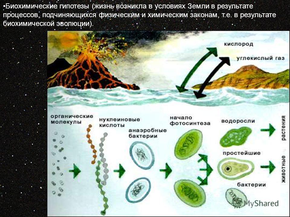 Биохимические гипотезы (жизнь возникла в условиях Земли в результате процессов, подчиняющихся физическим и химическим законам, т.е. в результате биохимической эволюции).