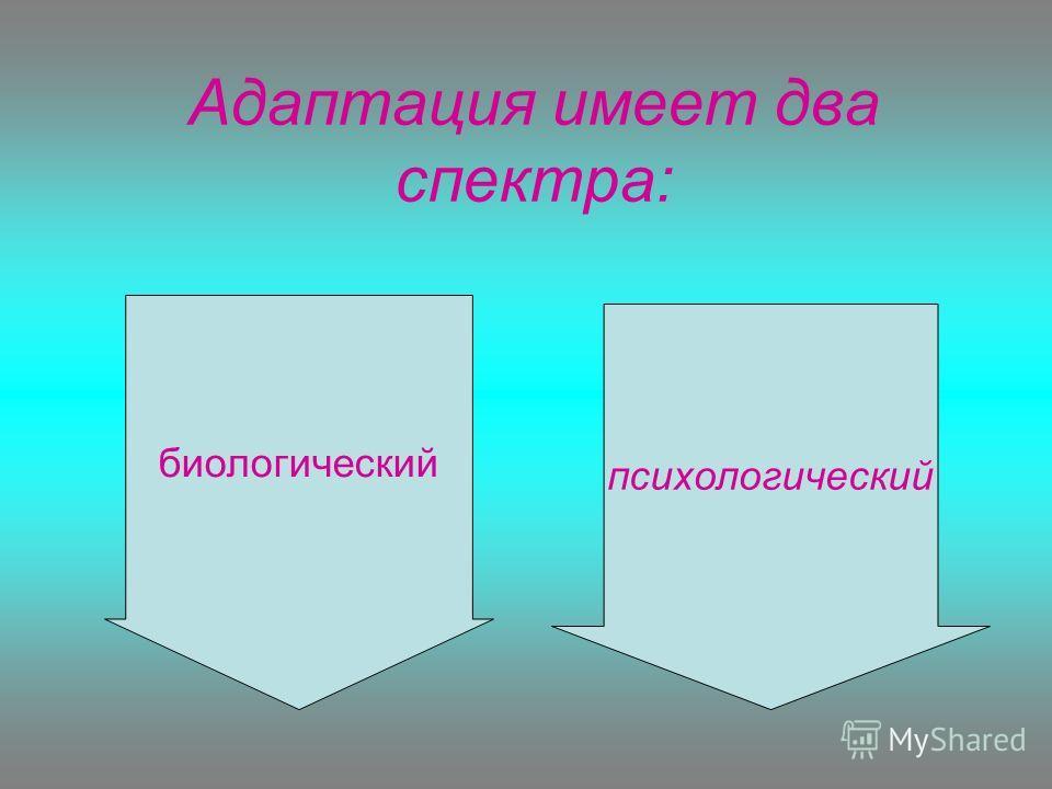 Адаптация имеет два спектра: психологический биологический