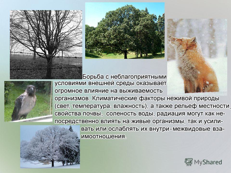 19.02.2014Братякова С.Б.21