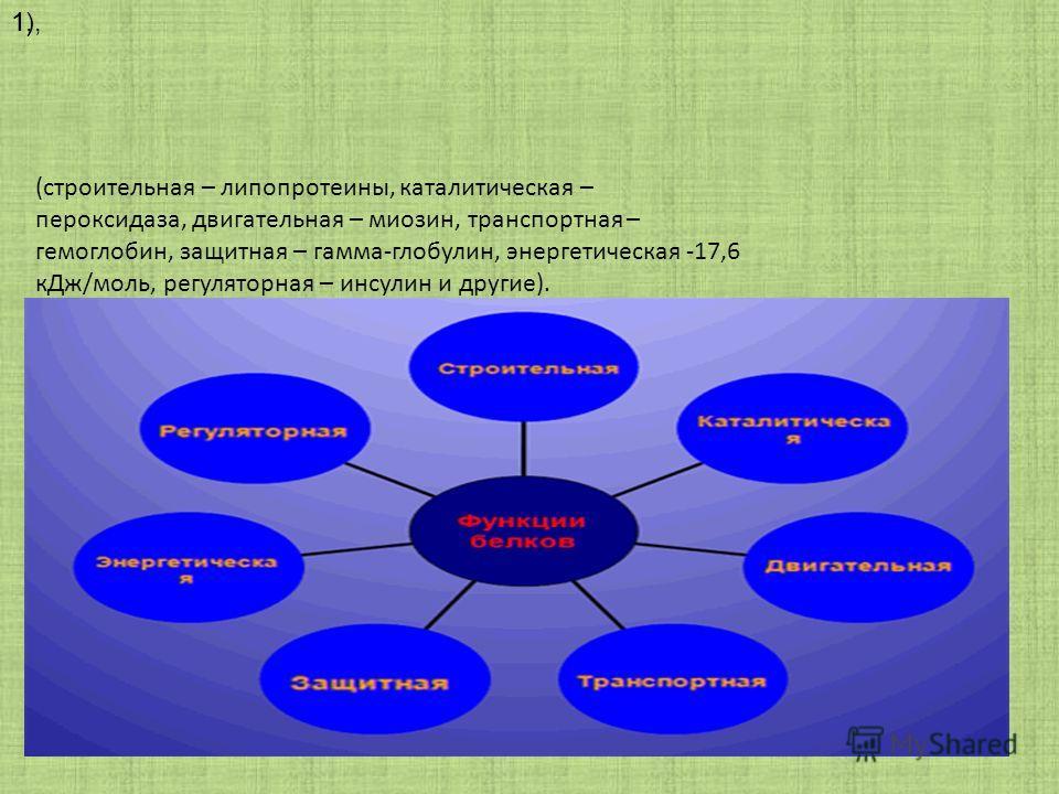 1),1, (строительная – липопротеины, каталитическая – пероксидаза, двигательная – миозин, транспортная – гемоглобин, защитная – гамма-глобулин, энергетическая -17,6 кДж/моль, регуляторная – инсулин и другие).