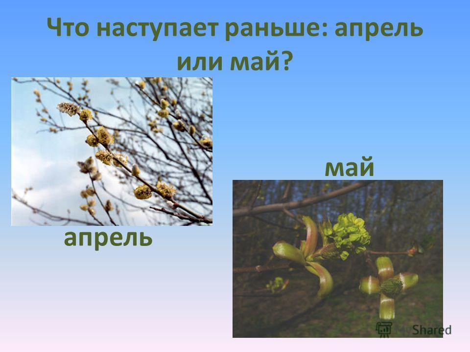 Какое время года наступает после весны? лето