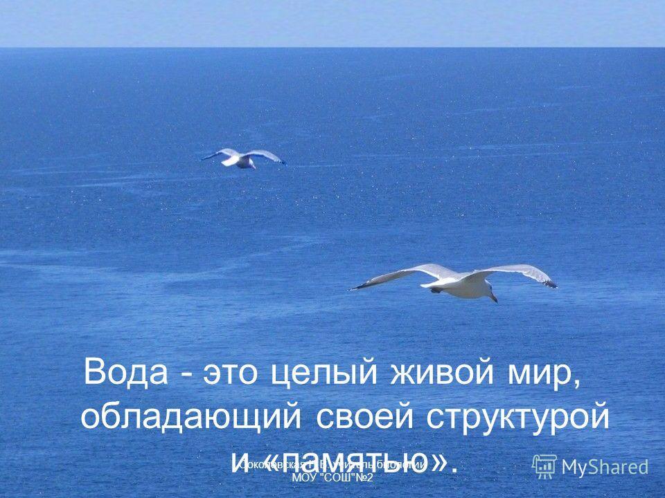 Вода - это целый живой мир, обладающий своей структурой и «памятью». Соколовская Н.В. учитель биологии МОУ СОШ2