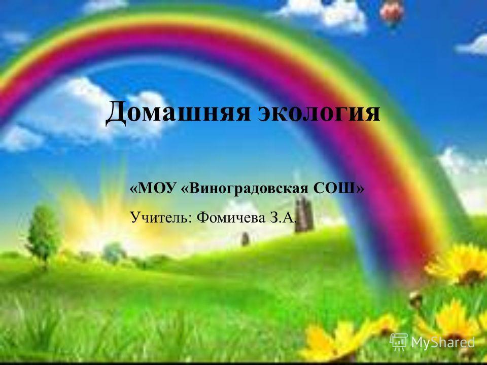 Домашняя экология «МОУ «Виноградовская СОШ» Учитель: Фомичева З.А.