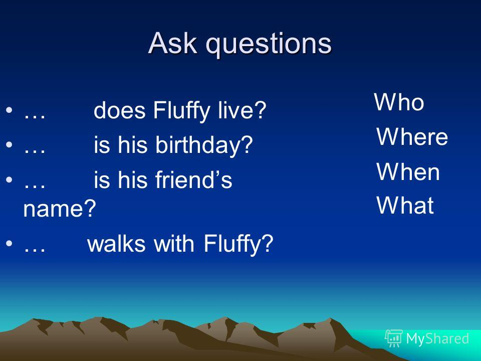 Ask questions … does Fluffy live? … is his birthday? … is his friends name? … walks with Fluffy? Who Where When What