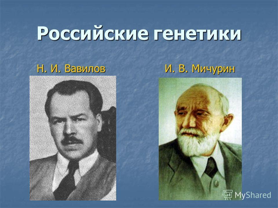Российские генетики Н. И. Вавилов Н. И. Вавилов И. В. Мичурин И. В. Мичурин