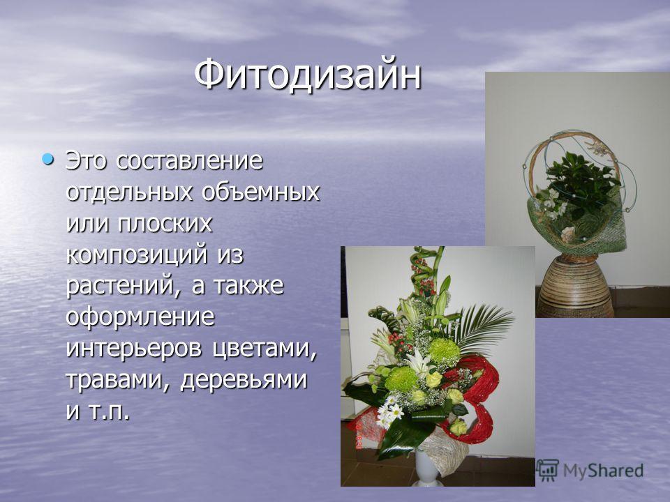 Фитодизайн Фитодизайн Это составление отдельных объемных или плоских композиций из растений, а также оформление интерьеров цветами, травами, деревьями и т.п. Это составление отдельных объемных или плоских композиций из растений, а также оформление ин