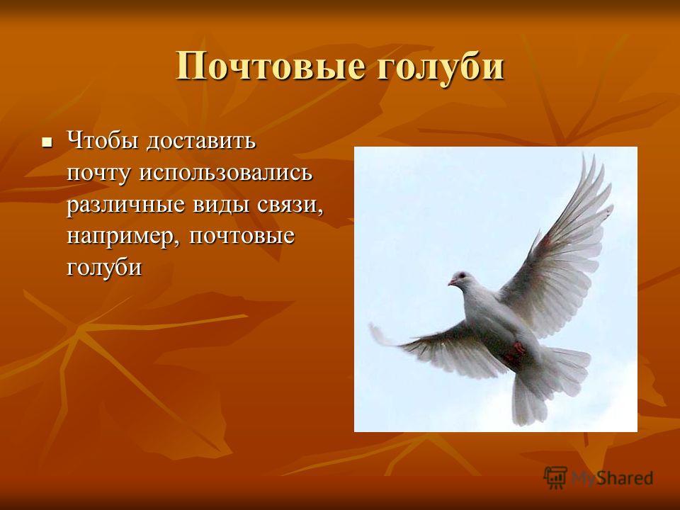 Почтовые голуби Чтобы доставить почту использовались различные виды связи, например, почтовые голуби Чтобы доставить почту использовались различные виды связи, например, почтовые голуби