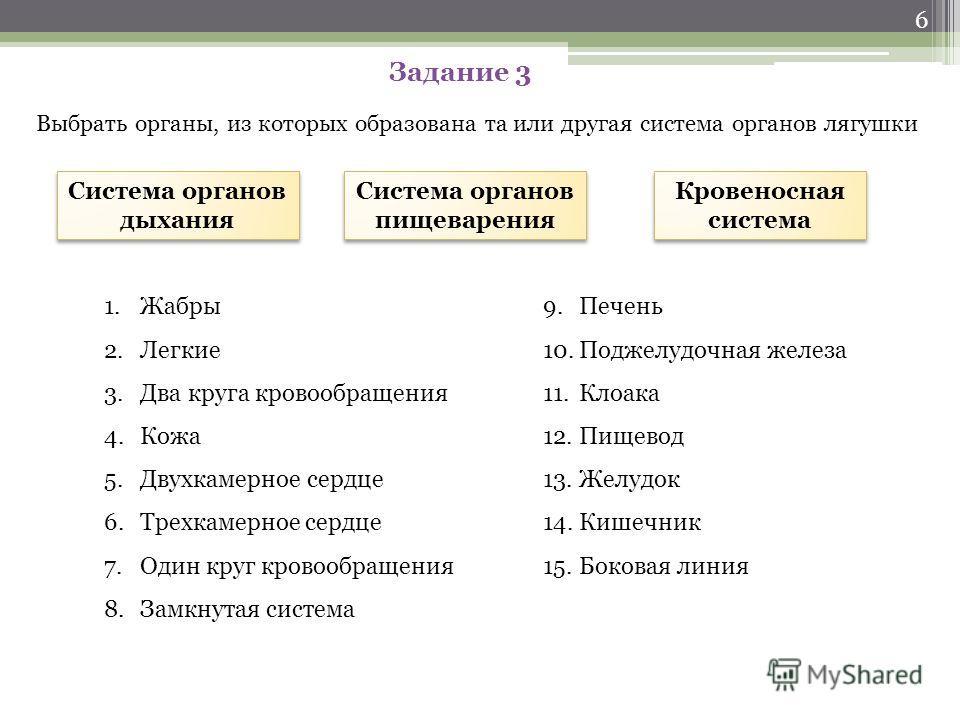 Ответ Задание 2 Озвучить по порядку стадии развития земноводных и дать им характеристику 1. Икра2. Зародыш 3. Головастик4. Лягушка 5