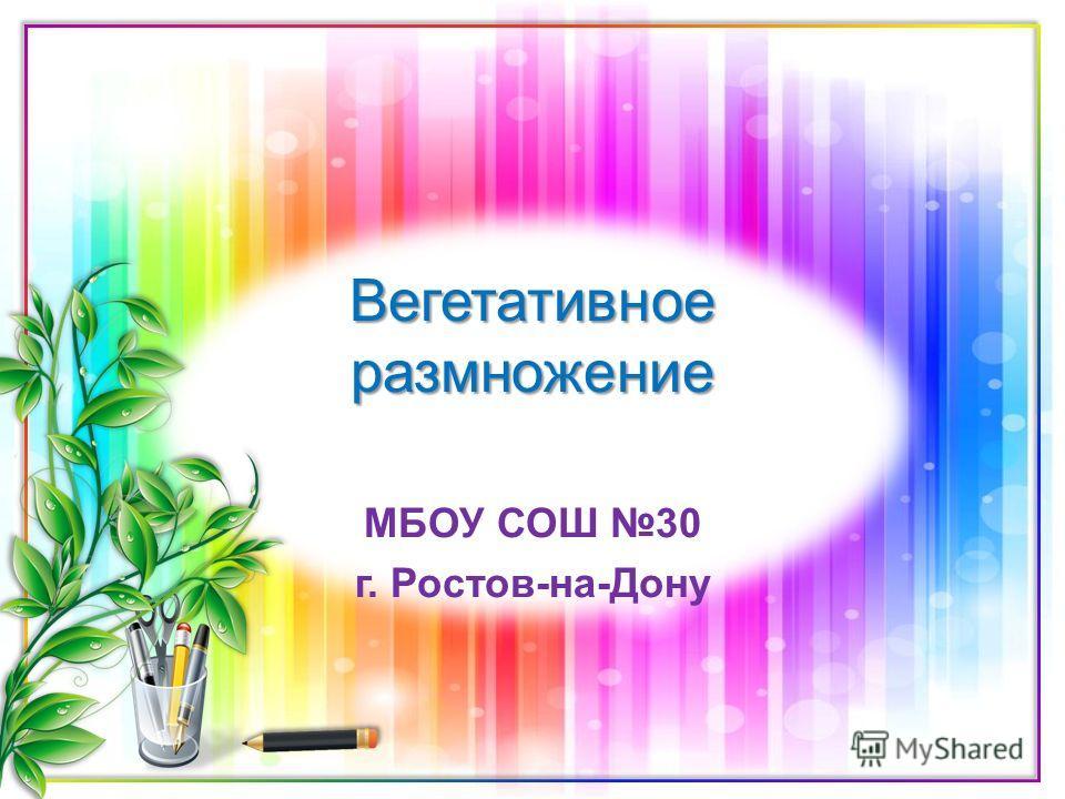 Вегетативное размножение МБОУ СОШ 30 г. Ростов-на-Дону