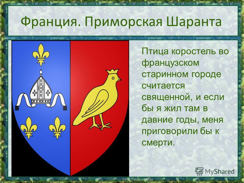 Франция. Приморская Шаранта 12 Птица коростель во французском старинном городе считается священной, и если бы я жил там в давние годы, меня приговорили бы к смерти.