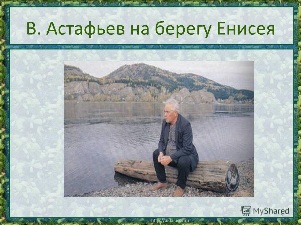 В. Астафьев на берегу Енисея 5