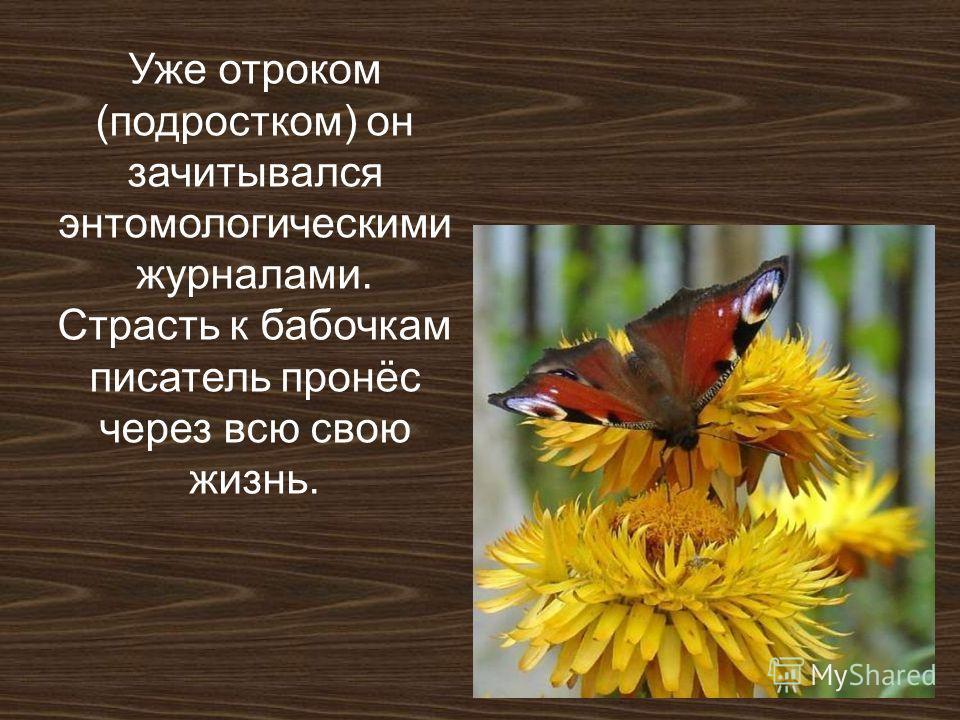 Уже отроком (подростком) он зачитывался энтомологическими журналами. Страсть к бабочкам писатель пронёс через всю свою жизнь.
