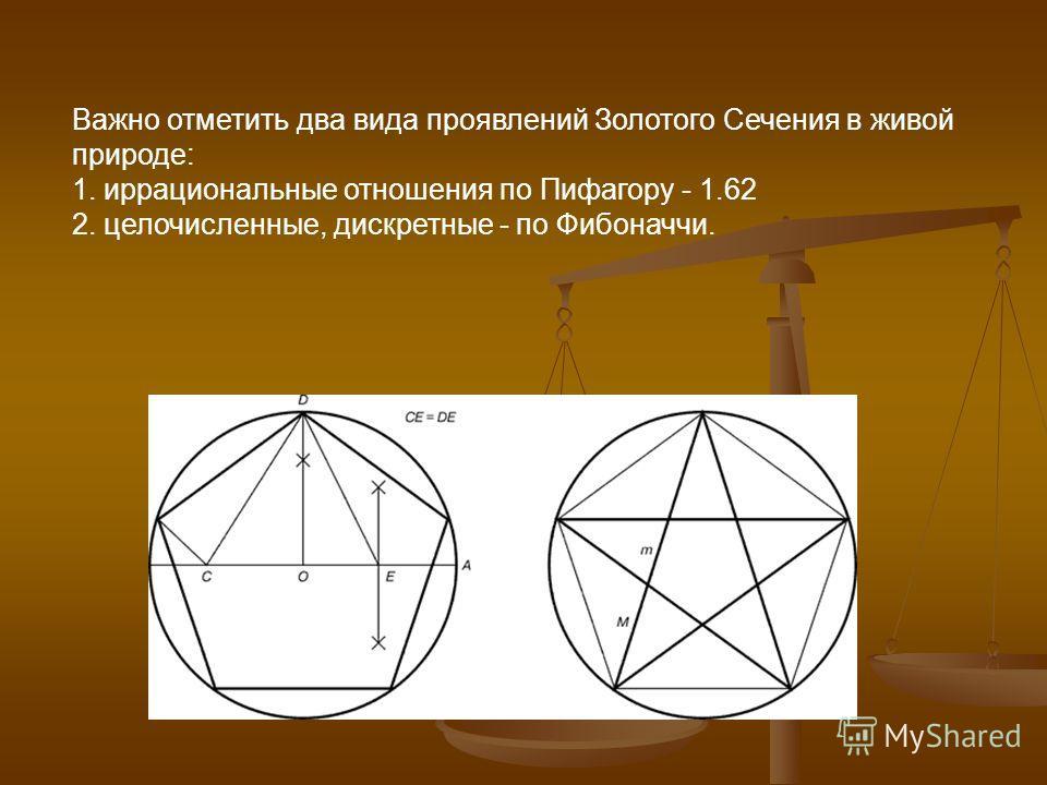 Важно отметить два вида проявлений Золотого Сечения в живой природе: 1. иррациональные отношения по Пифагору - 1.62 2. целочисленные, дискретные - по Фибоначчи.