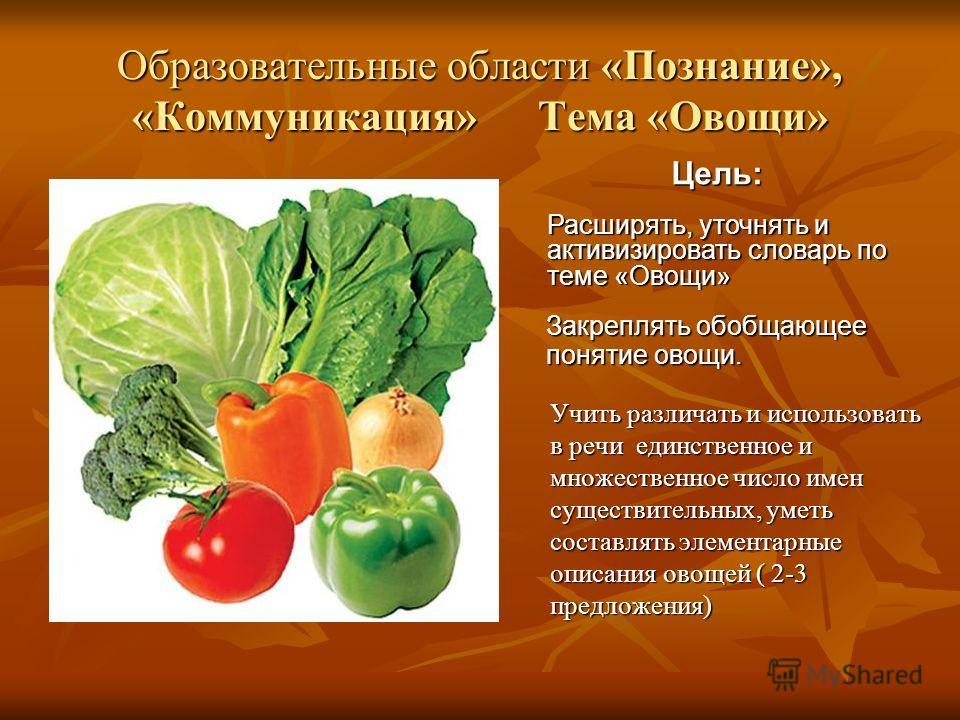 Образовательные области «Познание», «Коммуникация» Тема «Овощи» Учить различать и использовать в речи единственное и множественное число имен существительных, уметь составлять элементарные описания овощей ( 2-3 предложения) Цель: Расширять, уточнять