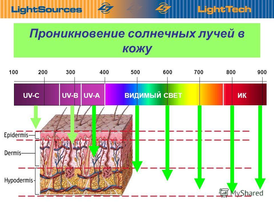 2 Проникновение солнечных лучей в кожу 100 200 300 400 500 600 700 800 900 UV-CUV-BUV-A ВИДИМЫЙ СВЕТ ИК