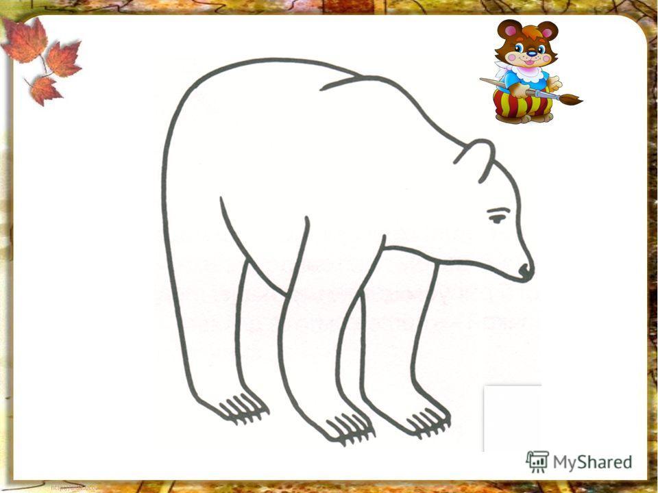 медведь морда рисунок